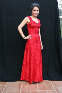 Beautiful Red Evening Dress (Front)