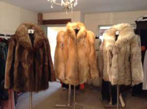Three Furs Front